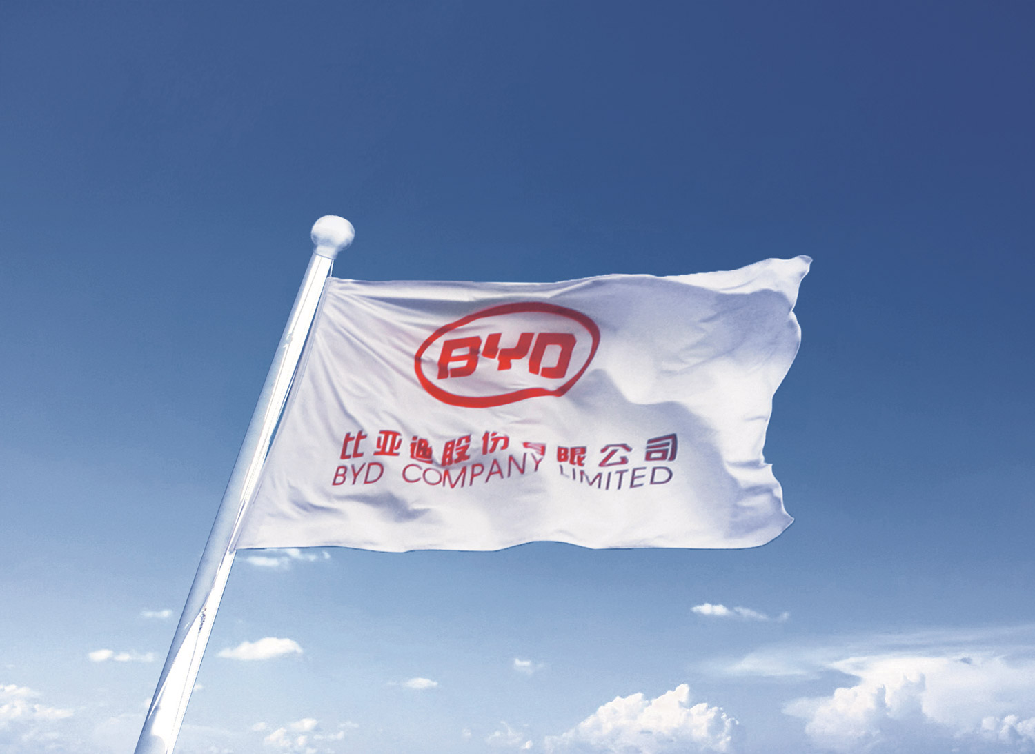 About BYD Group